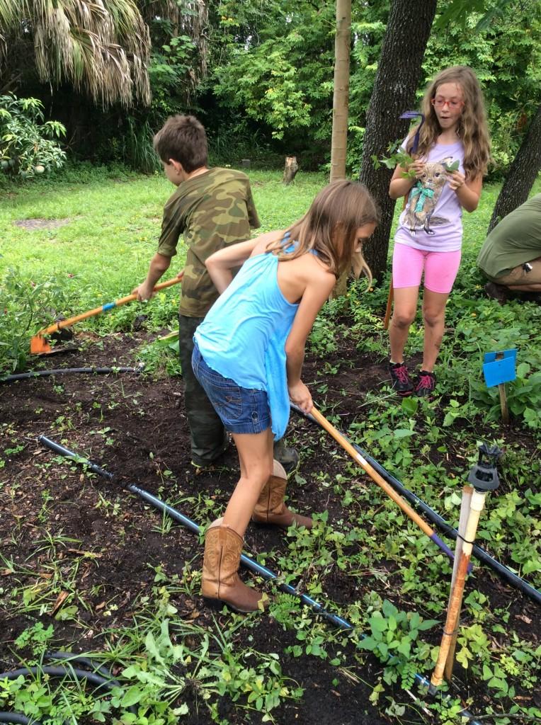 Farm Camp Working in the Herb Garden