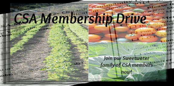 MembershipDriveH