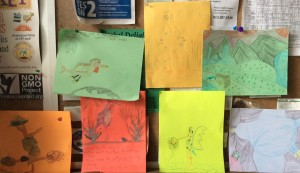 Farm Camp Bird Adaptations Drawings