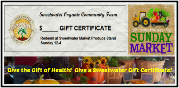 Gift Certificate Feature