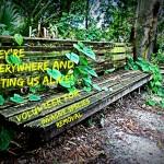 Invasive Species Volunteer Day