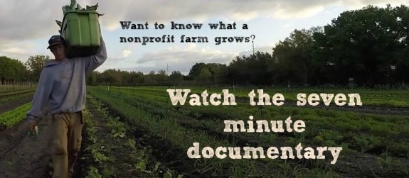 Long Daniel field USF documentary to watch
